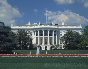 Curriculum Design & Instruction To Teach The American Presidency