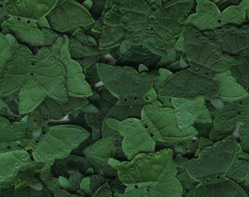 Hunter Green Silk Butterfly Petals ~ Wedding ~ Shower ~ Party ~ Favors