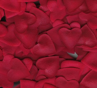 Red Silk Heart Petals ~ Wedding ~ Shower ~ Party ~ Favors