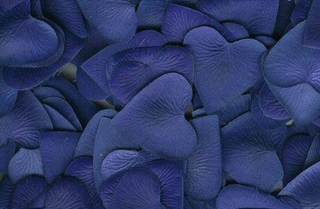 Royal Blue Silk Heart Petals ~ Wedding ~ Shower ~ Party ~ Favors