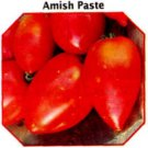 Amish Paste heirloom roma tomato seeds