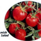 Amish Salad heirloom pink cherry tomato seeds