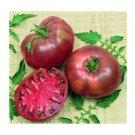 Cherokee Purple heirloom tomato seeds