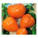 Orange Strawberry, oxheart tomato seeds