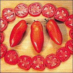 Opalka roma tomato seeds