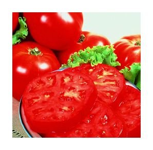 Supersteak tomato seeds, beefsteak