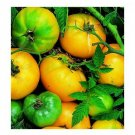 Azoychka Russian heirloom tomato seeds