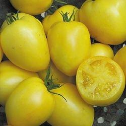 Powers Heirloom yellow roma tomato seeds