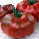 Paul Robeson Russian heirloom tomato seeds