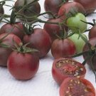 Chocolate Cherry  tomato seeds