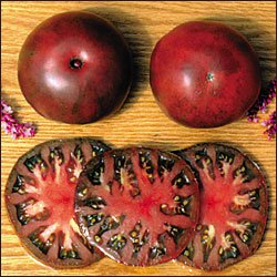 Black From Tula heirloom tomato seeds