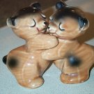 Cute Vantellingen Brown Bears Huggies Salt Pepper Set