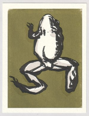 FROG silkscreen Gocco print by Sean Bieri