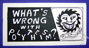 WHAT'S WRONG WITH POLYTHEISM mini-comic MIKE ROMOTH 1994