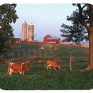 mouse pad DAIRY FARM dairy cows cow farming mouse pad