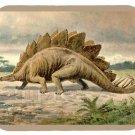 mouse pad STEGOSAURUS dinosaur m3