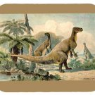 mouse pad IGUANODON by heinrich harder 1916