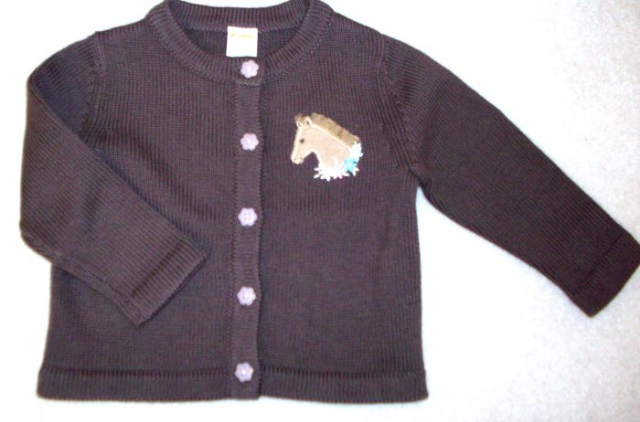 GYMBOREE Park City Luxe NWT Sweater HTF! 18-24 m