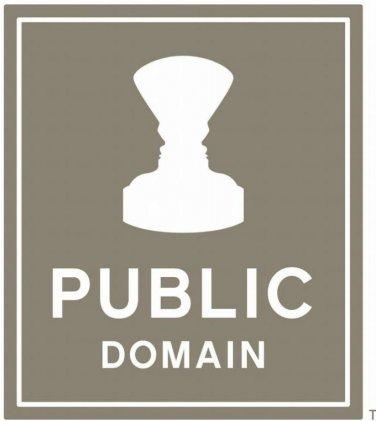 Profit Using the Public Domain ebook