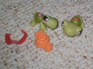 Littlest Pet Shop turtle duo 7 8 glasses