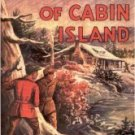 Dollhouse Miniature Mystery of Cabin Island Hardy Boys