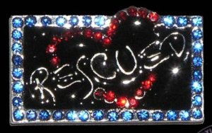 RESCUED Dog Rescue from the shelter or pound - Slider Charm 10mm for Collars & Fashion Bracelets