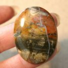 Petrified Wood Cab 1 1/2 inch by 1 inch Nice River