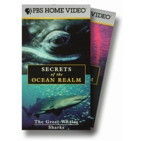 secrets of the ocean realm VHS 5-piece set 1998 PBS color used mint
