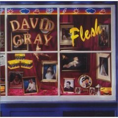 david gray : flesh CD 1994 virgin 10 tracks used near mint