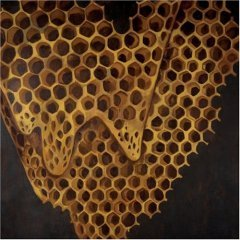 telefon tel aviv - map of what is effortless CD 2004 hefty records used mint