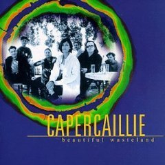 capercaillie - beautiful wasteland CD 1998 survival rykodisc used very good