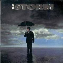 the storm CD 1991 interscope 12 tracks used mint inserts punched