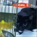 local h - pack up the cats CD 1998 polygram island used very good