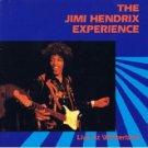 jimi hendrix experience - live at winterland MINI DISC1987 rykodisc used