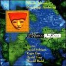 nicola alesimi and pier luigi andreoni - morco polo CD 1998 materiali sonori new