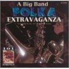 a big band polka extravaganza - 101 strngs CD 1996 madacy new