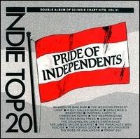 pride of independents - indie top 20 vol 6 CD 1989 beechwood used mint