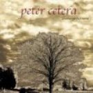 peter cetera - another perfect world CD 2001 navarre used mint