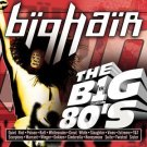 VH1 - big hair the big 80's - various artists CD 1999 rhino viacom 16 tracks used mint