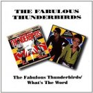 fabulous thunderbirds - fabulous thunderbirds / what's the word CD 1993 BGO