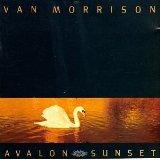 van morrison - avalon sunset CD 1989 caledonia polydor 10 tracks used mint
