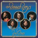 beach boys - 15 big ones / love you CD 2000 brother capitol 29 tracks used mint