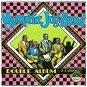 memphis jug band - double album CD 1990 yazoo records 23 tracks used mint