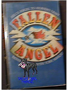 Fallen Angel Barry Mayson HB/DJ VG- Rare OOP Hells Angels