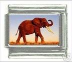 Cute Elephant Italian Charm