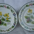 "2 1990 Royal Worcester ""Herb"" Porcelain Bread and Butter Plates- Black Mustard"