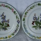 "2 1990 Royal Worcester ""Herb"" Porcelain Salad Plates- Sage"