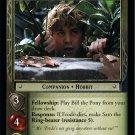 1R310 - Sam, Faithful Companion