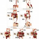2007 Arizona Cardinals NFL Playoffs Team Set