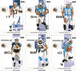 2007 Carolina Panthers NFL Playoffs Team Set